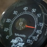 umidità - humidity
