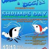 CrazyShrips Day a Ciampino (ROMA)