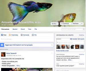 gruppo su Facebook: acquariando