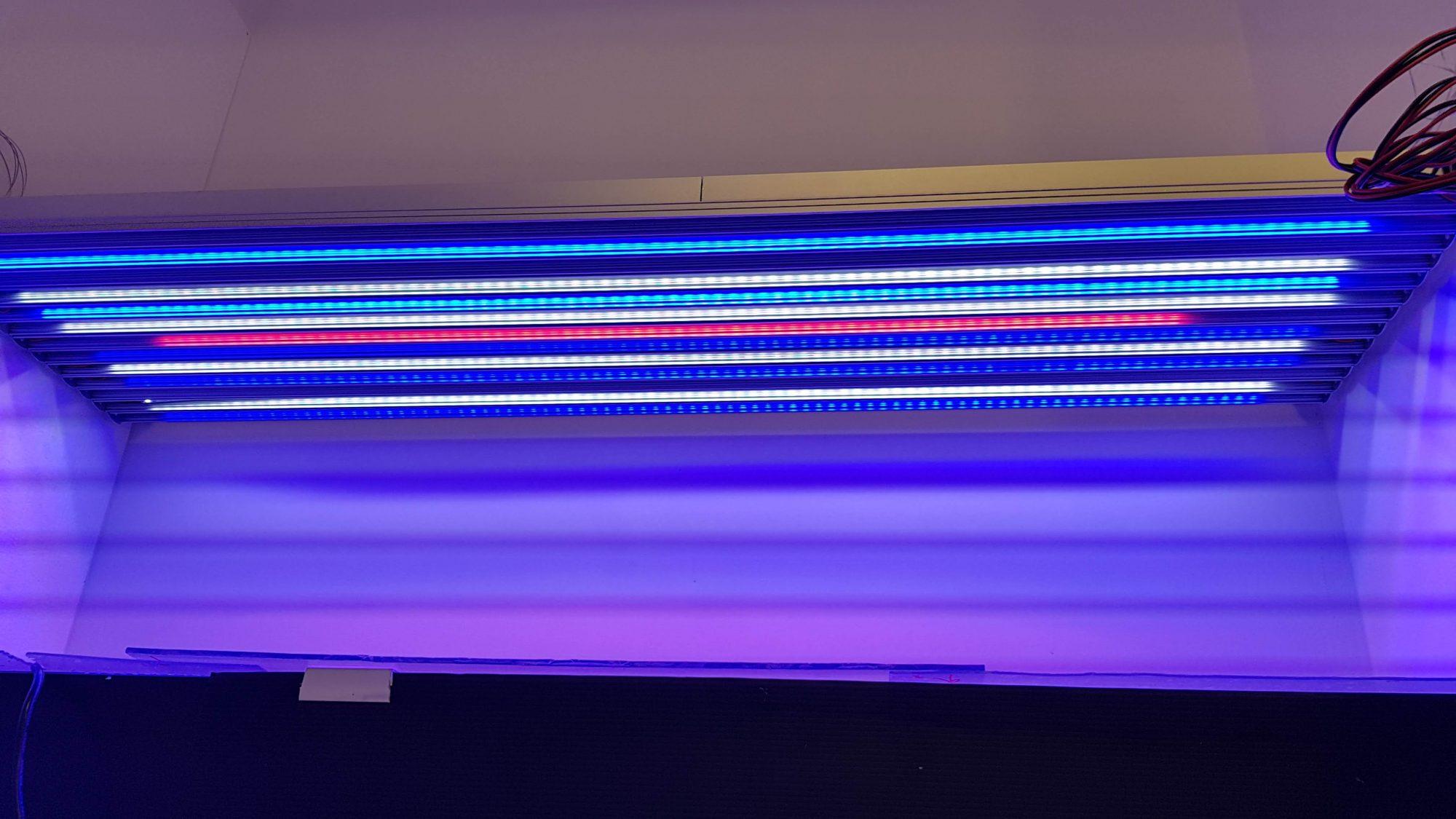 strisce LED per acquario marino