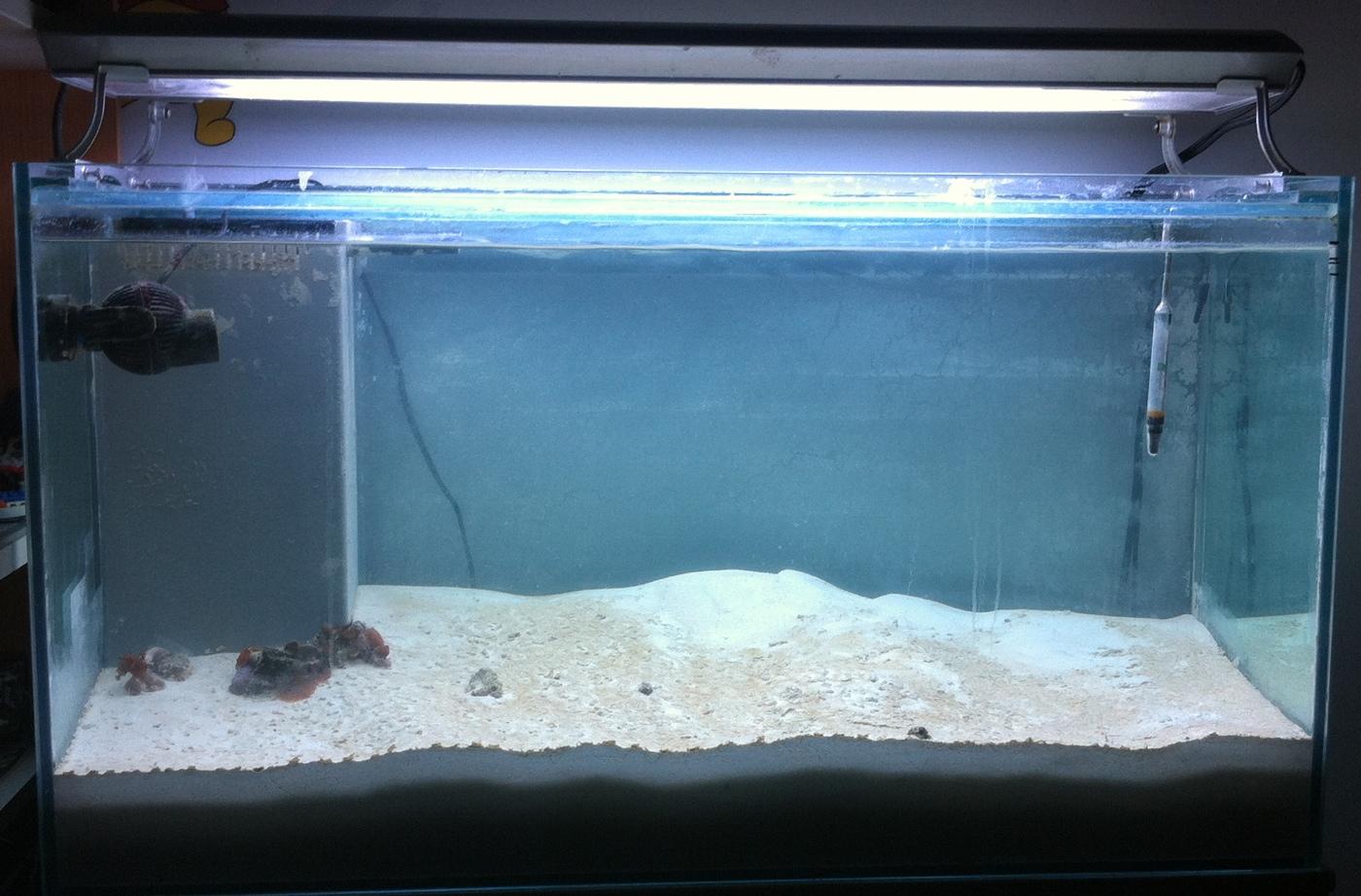 Acquario marino 200 litri for Acquario marino 100 litri prezzo