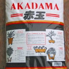 Akadama in acquario, cos'è e come usarla