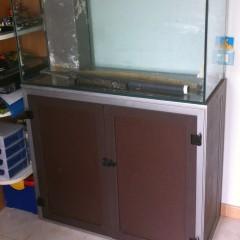 Il secondo acquario marino: 200 litri, poco budget e tante alghe?