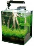 wave box cube 25, piccolo acquario d'acqua dolce